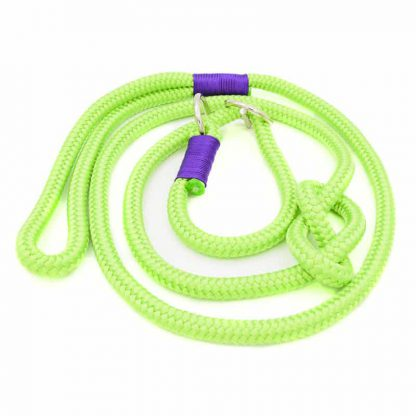 Retrieverleine aus PPM-Seil green/purple