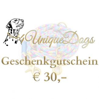 Gutschein im Wert von € 30,-