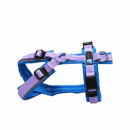Anny-X Brustgeschirr Fun Reflectiv lichtblau / flieder