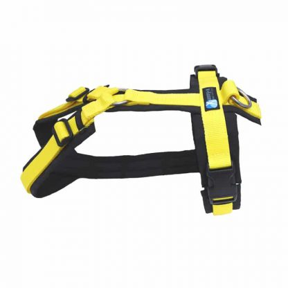 Anny-X Brustgeschirr Fun Sonderfarbe schwarz / gelb